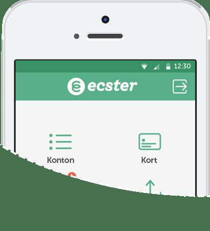Ecster och Wikinggruppen utökar sitt samarbete genom ett komplett e-handelserbjudande helt utan startavgifter