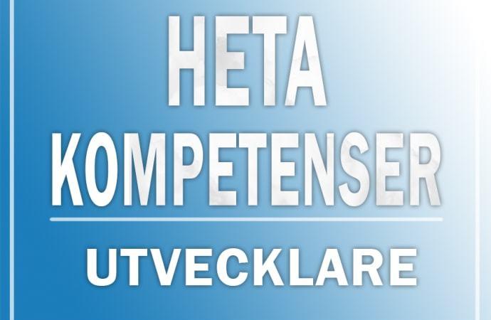 Topp 20: Hetaste kompetenserna för utvecklare 2018