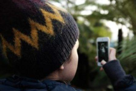 Skärmtid på mobilen lockar barn mer än godis 1