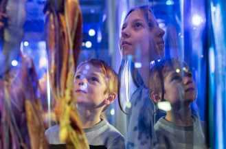 Vad är framtidens människa? Tekniska undersöker människans relation till tekniken i ny utställning 1