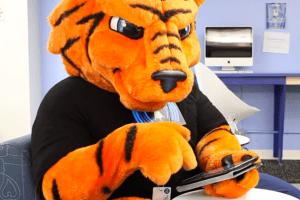 Tiger Using a Tablet