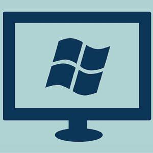 Windows Computer Icon