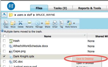 WebFiles Save to Desktop