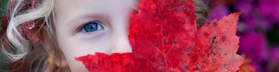 Terapia Sistémica en la Infancia y Adolescenci