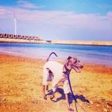海を歩く。