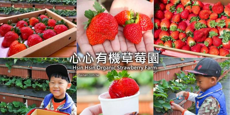 嘉義旅遊景點 嘉義也有草莓園啦!親子旅遊冬季限定採草莓「心心有機草莓園」還有媲美哈根達斯的草莓冰淇淋可以吃!!有機認證草莓園 網室高架草莓 嘉義大林草莓園