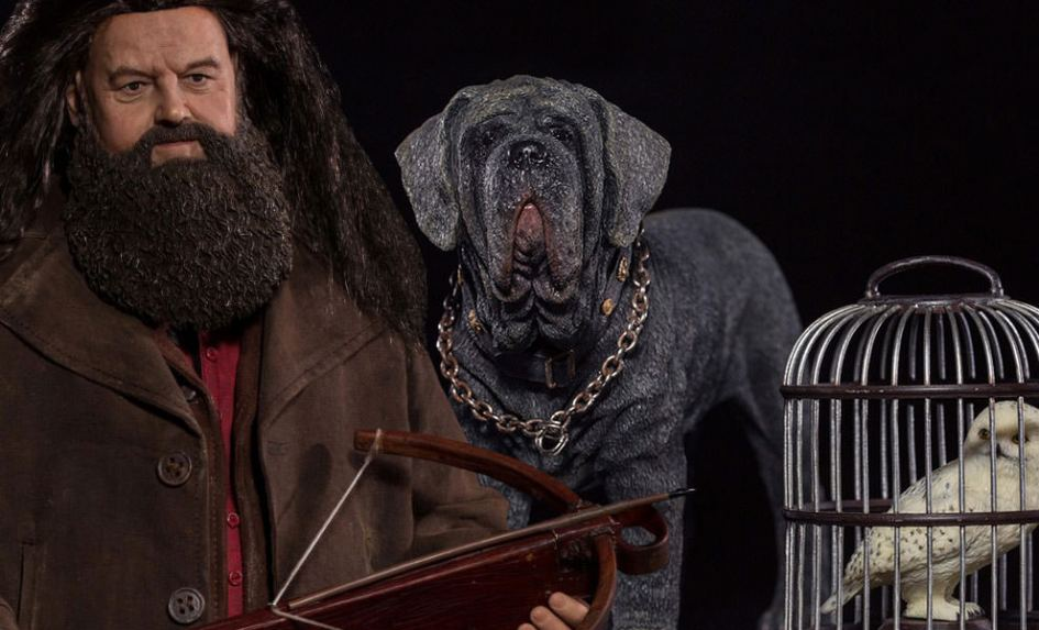 harry-potter-rubeus-hagrid-deluxe-version-sixth-scale-star-ace-toys-ltd-feature-9026612