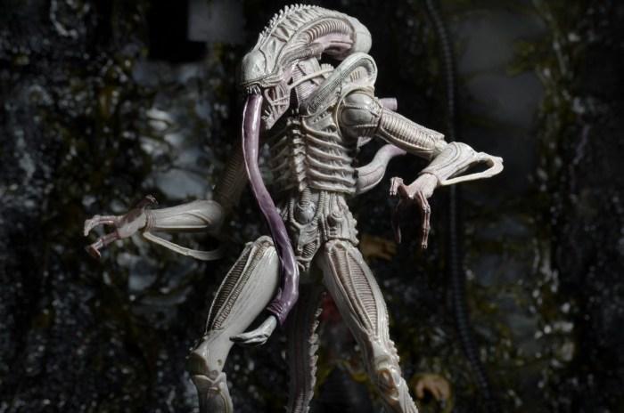 Albino-Alien-Aliens-Series-9-by-NECA-004
