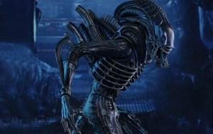hot-toys-alien-warrior-12-action-figure-acf-11784821459868355_jpg_800x0_upscale_SLIDE
