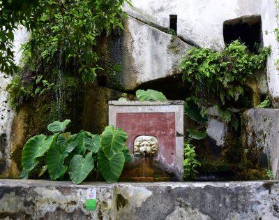 Fontana della Gorgone. Foto di Alina Zvonareva