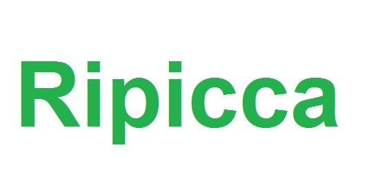 149_ripicca_immagine