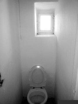 The entire bathroom