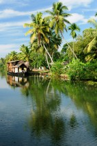 Kerala canal