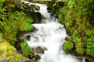A beautiful waterfall in the Pacific Northwest