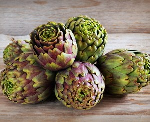 early artichoke of Jesi