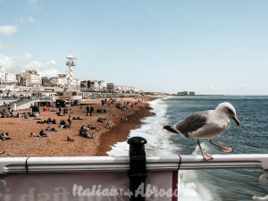 Brighton winter day trips from London