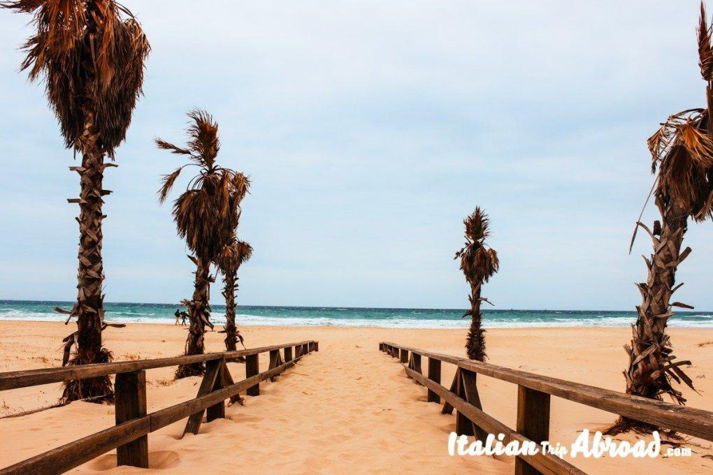 Playa de tarifa - best beaches of Andalusia