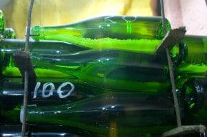 101046601-Sparkling wine bottles resting on lees