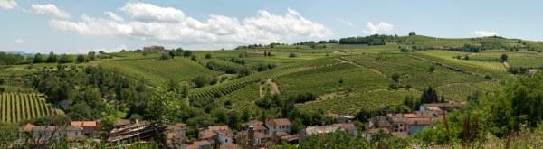 135112145-Vineyards near Acqui