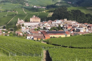 177498690-Barolo village surrounded by vineyards
