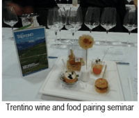 Trentino wine and food pairing seminar
