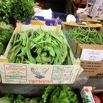 イタリアの市場の野菜
