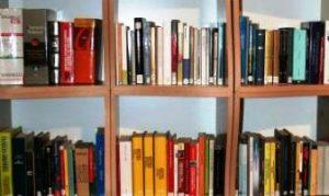 Bibliothek Italienverein