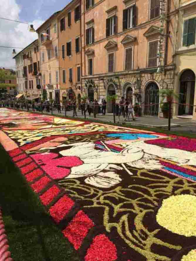 A portion of the blanket of flowers from the Infiorata in Genzano
