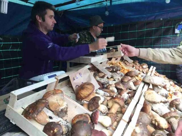 Funghi Porcini stand
