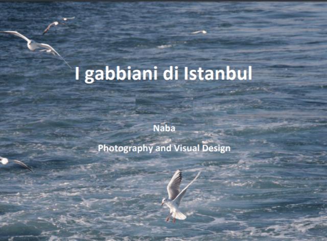 I gabbiani di Istanbul.png