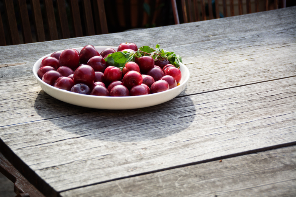 plate of plums on table-italy on my mind