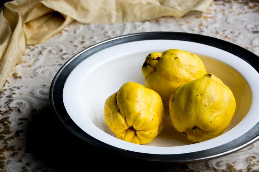 quinces-italy on my mind-portrait