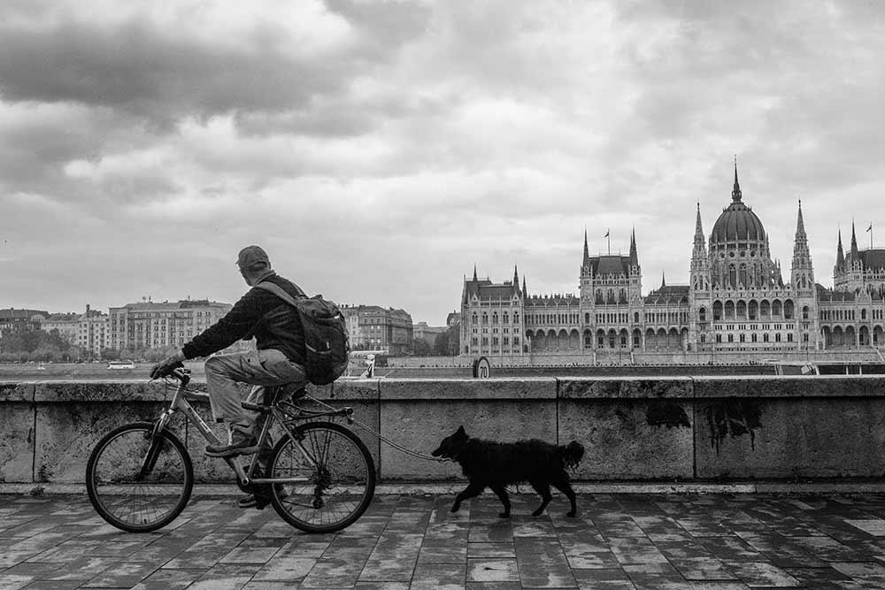 Danube, Budapest