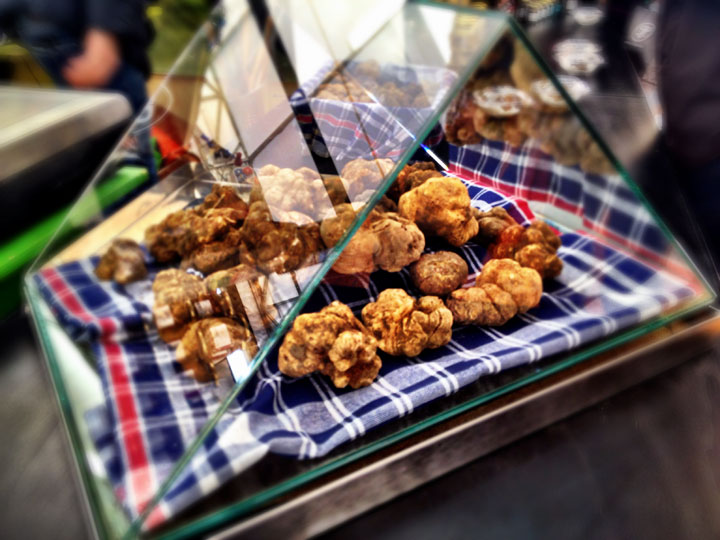 White truffles on display in Città di Castello during the annual tartufo festival.