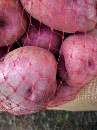 """L'occhiatura delle patate rosse di Cetica ovvero le cavità sulla superficie che sembrano """"buchi"""""""