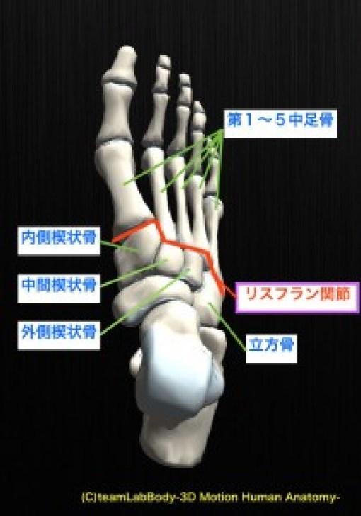 リスフラン関節