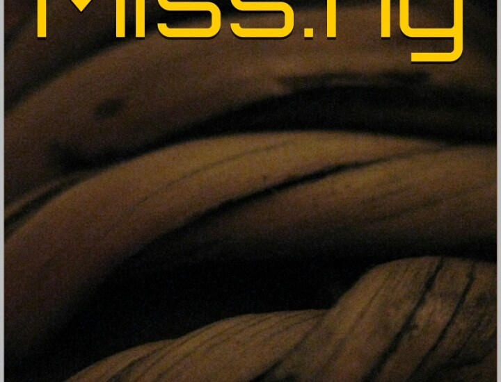 Book Review- Missing by Simi Joel