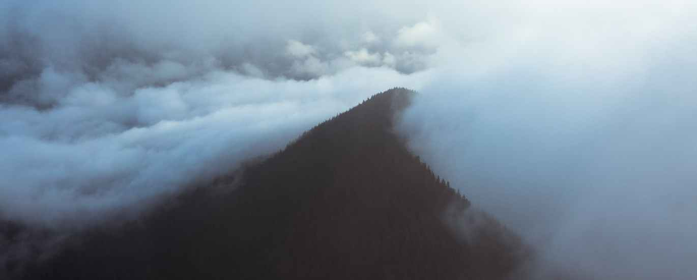 mountain peak covered with forest in fog