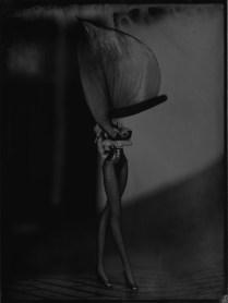 ©Jean-Philippe Pernot