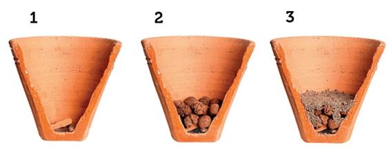 jardim de temperos passo 1 a 3