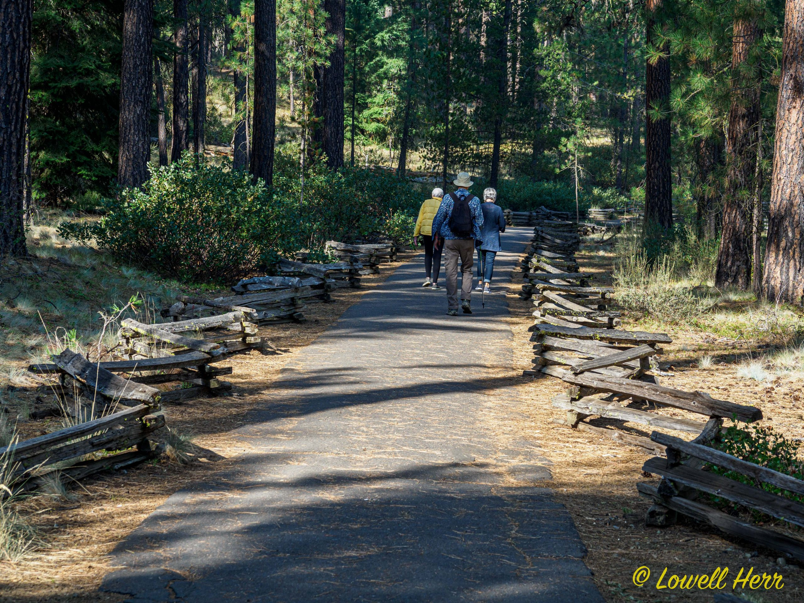 Metolius River and Several Music Recommendations 2