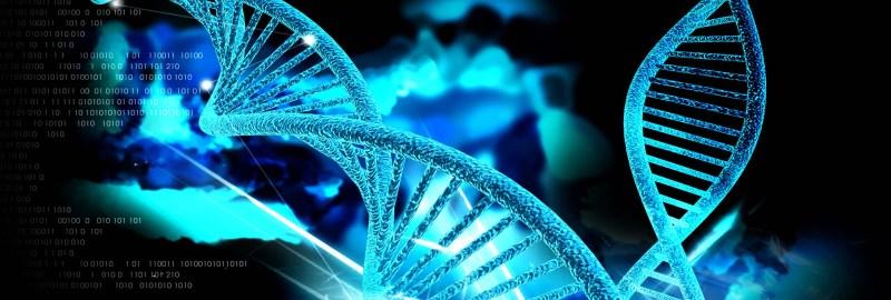Самый маленький в мире ДНК-компьютер