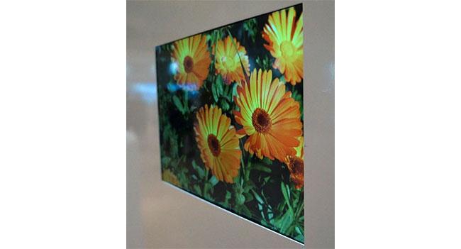 LG Display показала мобильные дисплеи с высоким разрешением