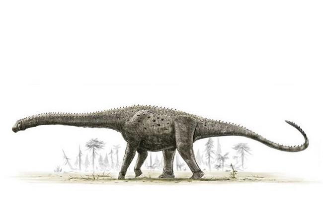Argentinosaurus_copy.0_standard_640.0