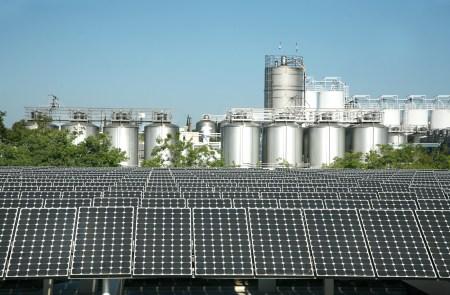 Tesla помогает пивоварам Sierra Nevada Brewing делать «зеленое» пиво