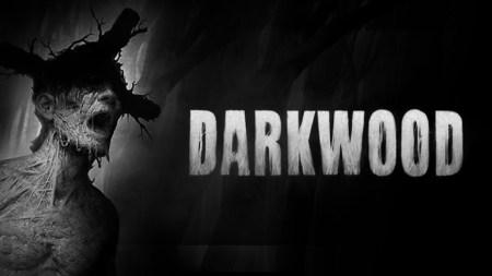 Разработчики новейшего успешного хоррора Darkwood выложили полную версию игры на The Pirate Bay, чтобы прекратить спекуляцию ключами в даркнете