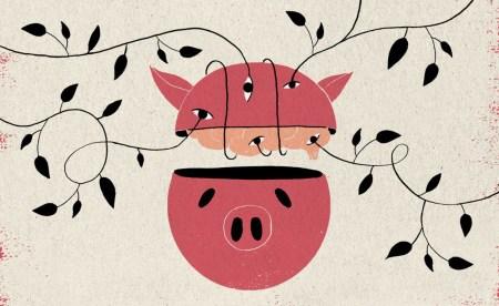 Ученые смогли сохранить свиные мозги живыми вне тела и теперь хотят перейти к экспериментам с мозгом человеческим