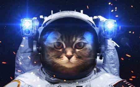 NASA требуются философы для создания «теории безопасных космических путешествий»