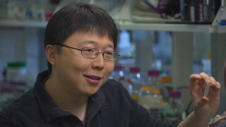Один из создателей CRISPR: «Нам нужен мораторий на генную модификацию детей, поскольку сейчас риски перевешивают выгоды»
