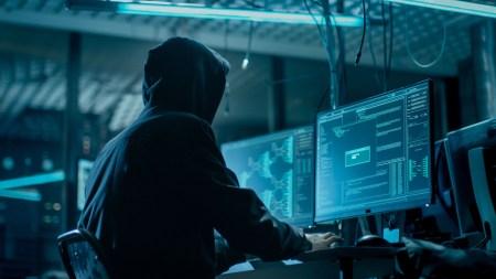 Исследование HackerRank: две трети студентов-кодеров — это самоучки